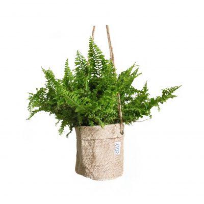 Praktischer Jutekorb mit 2 Metallringen. Sie können beispielsweise eine Pflanze in den Korb hängen.